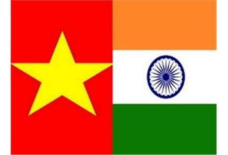 印度驻越南大使:印度将努力成为越南十大投资国之一 hinh anh 1