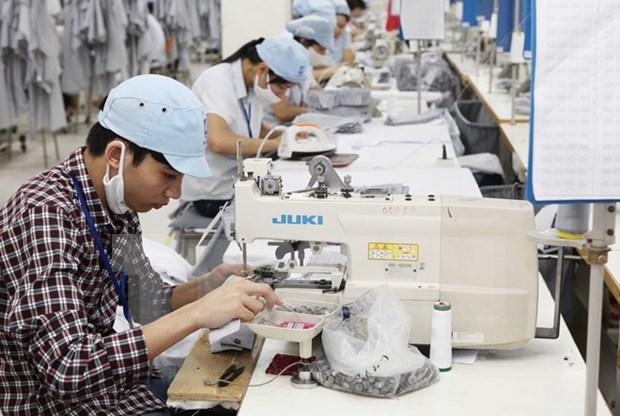 欧盟越南商会致力加强越欧企业的联系 hinh anh 1