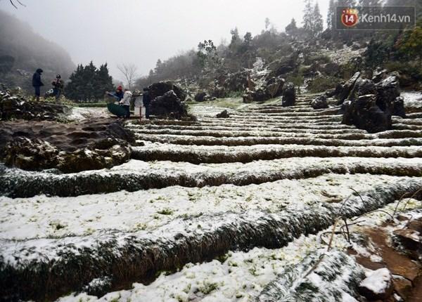 越南北部遭遇罕见低温寒冷天气多地首次下雪 hinh anh 1