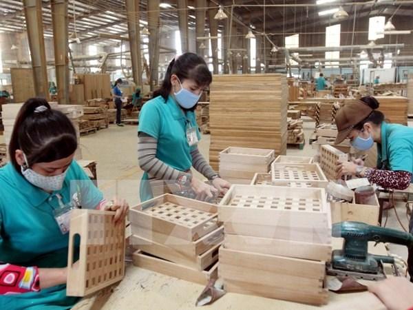 越南与欧盟就木材合法来源管理工作达成协议 hinh anh 1