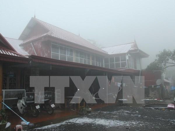 低温降雪天气对越南北部地区农业造成严重损失 hinh anh 1