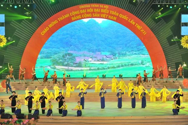越南举行盛大文艺晚会 庆祝越共十二大取得圆满成功 hinh anh 3