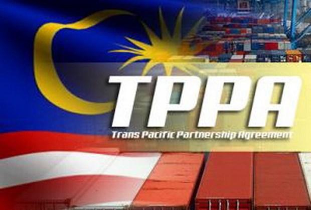 马来西亚上下两院正式通过《跨太平洋伙伴关系协定》 hinh anh 1