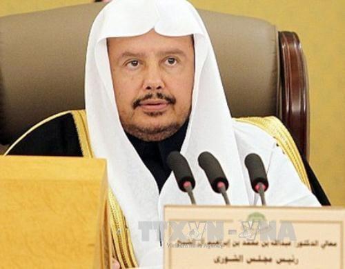 沙特阿拉伯王国协商会议主席对越南进行访问 hinh anh 1