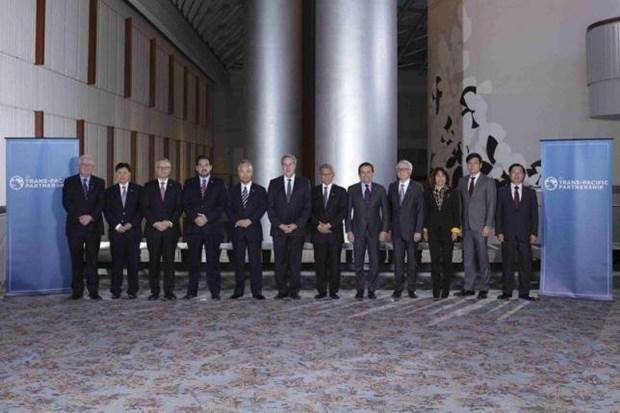 越南工商部部长武辉煌:采取适当措施 充分利用TPP优势 hinh anh 2