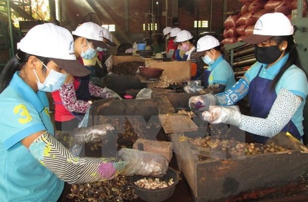 越南政府总理批准《越老贸易协定》执行计划 hinh anh 1