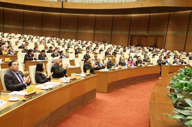 国会主席阮生雄:各级人民议会继续革新提高解决当地重要问题的效率 hinh anh 1