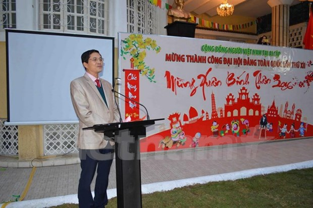 越南驻埃及大使馆举行招待会喜迎新春佳节 hinh anh 1
