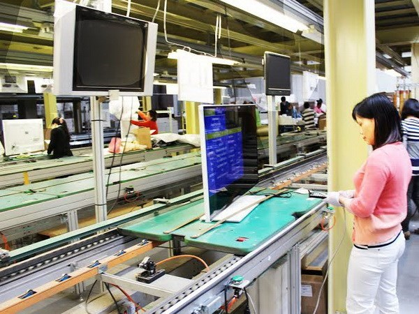 比利时企业扩大对越南投资力度 hinh anh 1