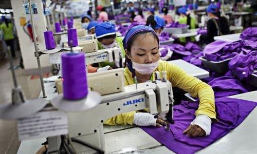 出口为2015年越南经济做出贡献 hinh anh 1