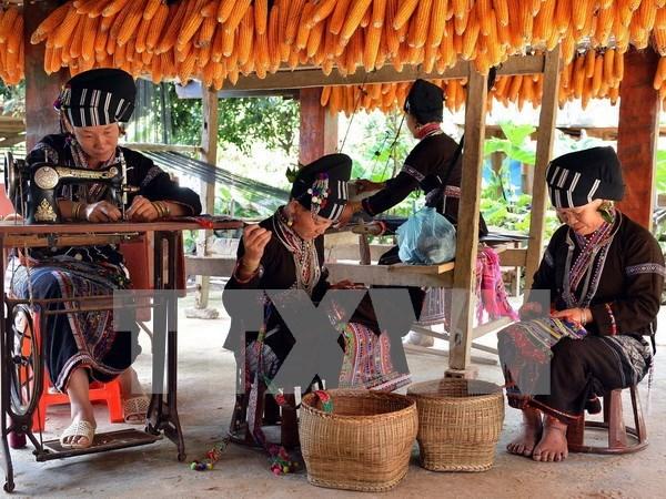 老街省力争将该省建成越南最具规模的山区自然景观与文化旅游中心 hinh anh 1