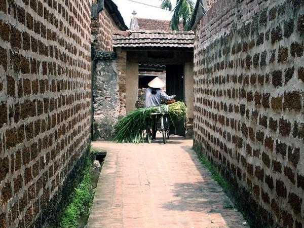 唐林古村旅游产品不断推陈出新有助于为保护与弘扬古村遗产价值 hinh anh 1