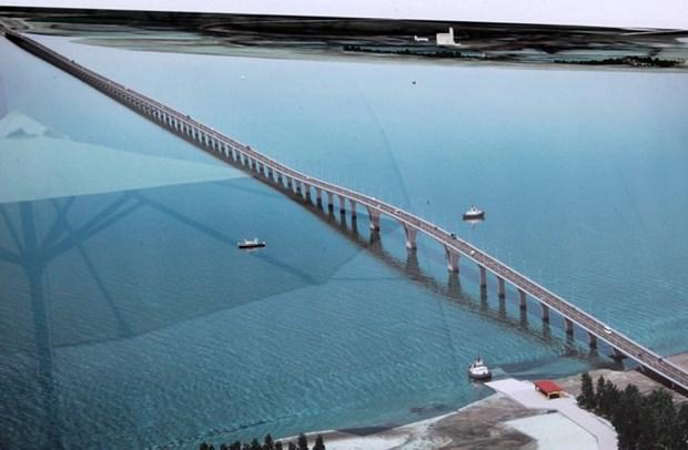越南海防市新武—沥县跨海大桥施工进度超预期7% hinh anh 1
