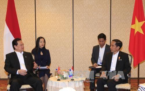 阮晋勇总理会见印尼总统佐科•维多多 hinh anh 2