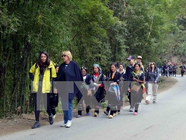 东盟一体化进程助推越南旅游业发展 hinh anh 1