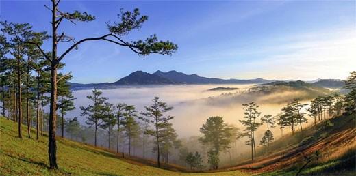 浪平山——西原地区的绿色明珠 hinh anh 1