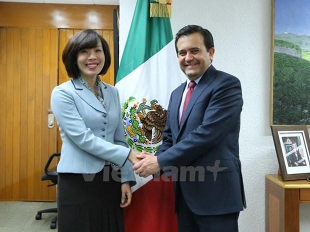 墨西哥与越南进一步促进经济合作 hinh anh 1