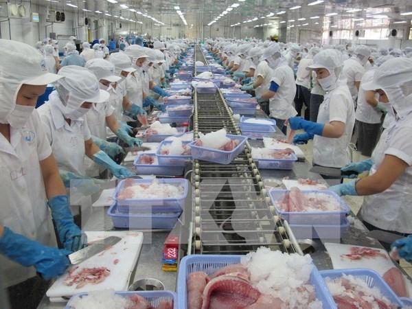 越南驻外贸易机构为越南打开国际市场搭建桥梁 hinh anh 2