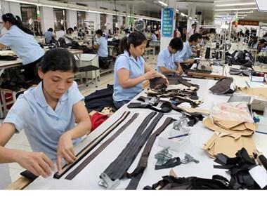 英国媒体:TPP有助于加大越南纺织品服装出口力度 hinh anh 1