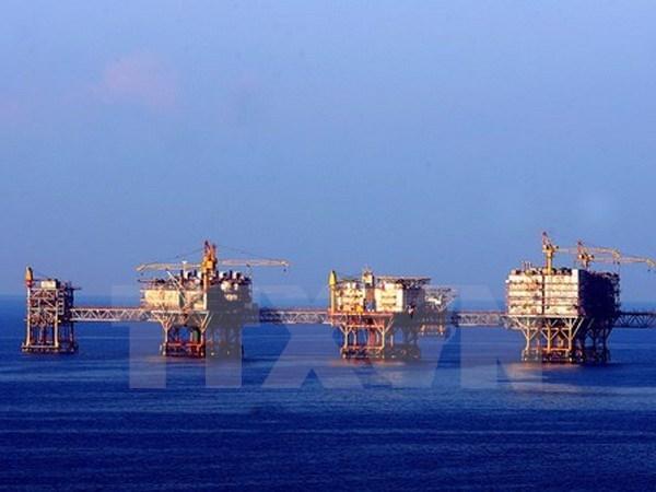 未来5年越俄石油联营公司石油开采量可达逾2440万吨 hinh anh 1