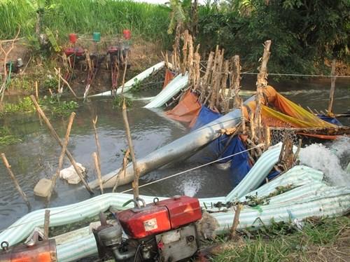 越南九龙江三角洲多地遭旱灾和海水入侵 金瓯省陷入一级干旱 hinh anh 3