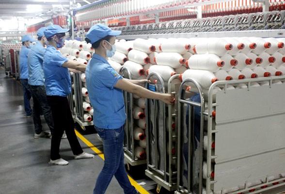 TPP为越南工业加快企业结构重组提供便利 hinh anh 1