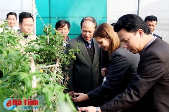 以色列与越南河静省加强合作关系 hinh anh 1