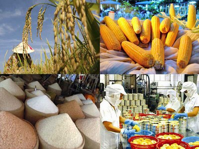 为越南农产品走向世界开辟大门:把信心交给商务处 hinh anh 1