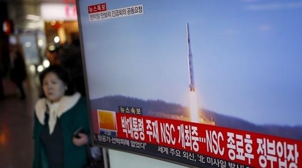 越南希望有关各方积极促进对话 寻找平解决朝鲜半岛问题的措施 hinh anh 1