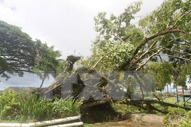 超强台风袭击斐济 越南国家领导人向斐济共和国领导人致慰问电 hinh anh 1