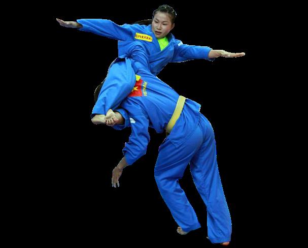 首届越南传统武术国际锦标赛即将举行吸引30个国家的运动员参赛 hinh anh 1