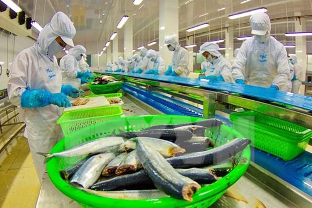 越南23个查鱼生产加工企业获批销往美国市场 hinh anh 1