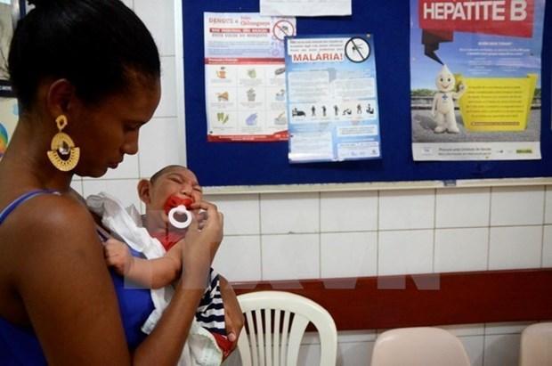 菲律宾发现2012年以来首例输入性寨卡病毒感染病例 患者为美国游客 hinh anh 1