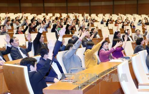 国会办公厅第十四届国会代表候选人为77名 hinh anh 1