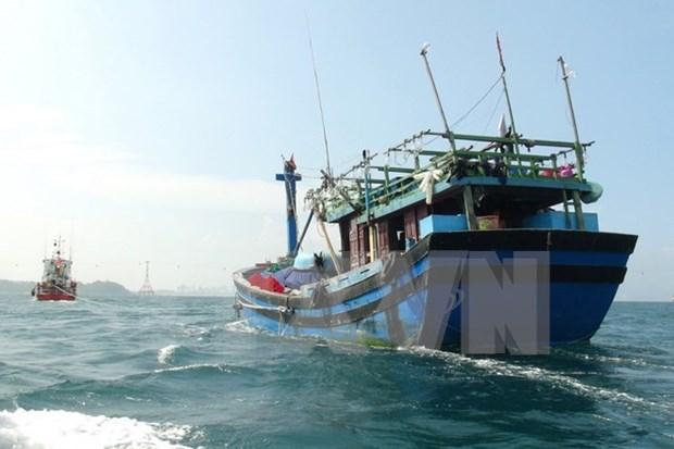 渔船沉没 越南通知中国职能机构配合展开搜救 hinh anh 1