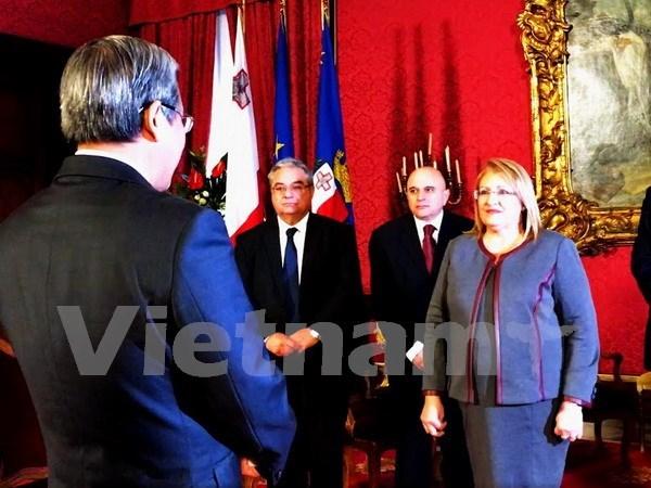 越南与马耳他两国在众多领域合作潜力巨大 hinh anh 1