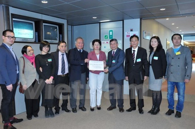 旅居欧洲越南人代表向欧洲议会递交有关东海问题的公开信 hinh anh 1