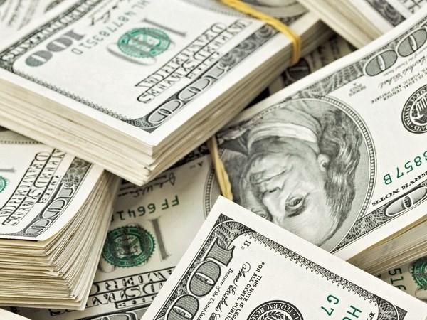 越盾兑美元中心汇率大幅下降 各家商业银行美元汇率不变 hinh anh 1