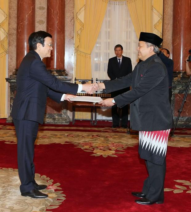 越南国家主席张晋创接受四国新任驻越大使递交国书 hinh anh 2