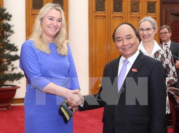 荷兰将为越南应对九龙江三角洲地区干旱和土地盐化提供支持 hinh anh 1