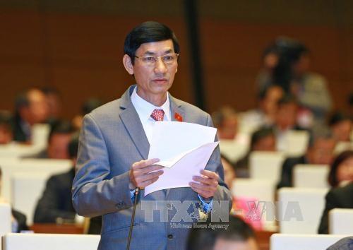 国会代表认为需加强国家机关行政改革和纪律纪纲 hinh anh 2