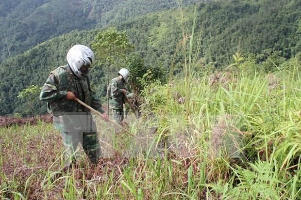 国际排雷行动日:河静省着力做好战后排雷工作 hinh anh 1