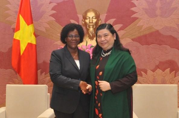 越南和莫桑比克加强议会间合作 促进两国各领域全面发展 hinh anh 1