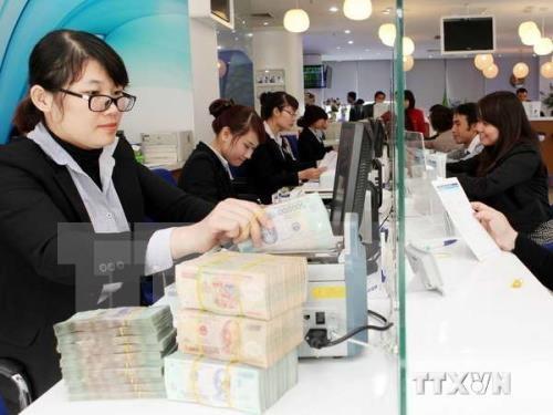 2016年越南信贷增长率被期望创近五年来新高 hinh anh 1