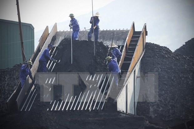 第一季度煤炭进口量同比增长300% hinh anh 1