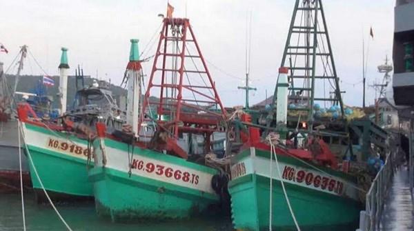 泰国海军再次扣留越南三艘载有33名渔民的渔船 hinh anh 1