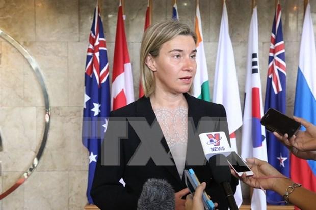 欧盟愿把欧盟—东盟关系提升为战略伙伴关系 hinh anh 1