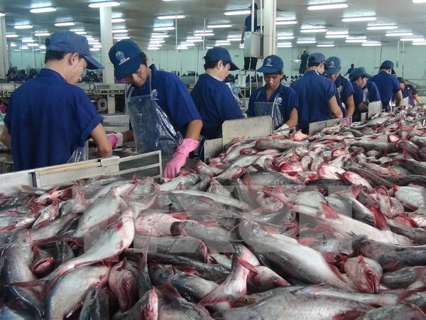 中国是越南大米和水产品出口大国之一 hinh anh 2