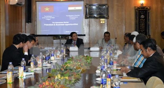 埃及阿斯旺省企业建议越南对其实施免签政策 hinh anh 1