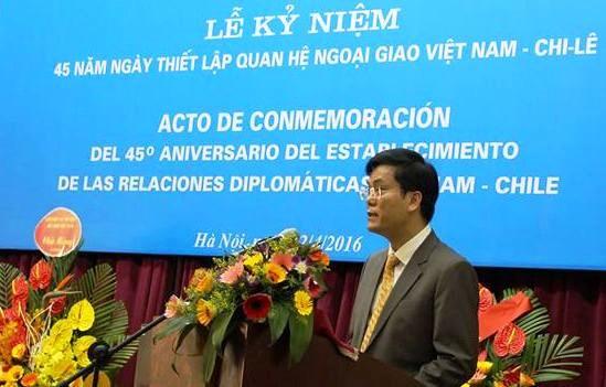 越南外交部副部长何金玉:越智两国合作潜力有待挖掘 hinh anh 1